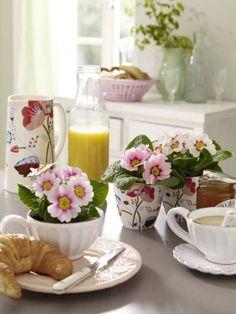 Lovely spring breakfast table