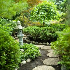 Asian Garden leading to my koi pond. I'd love a little sitting area where i can read and ponder as well.