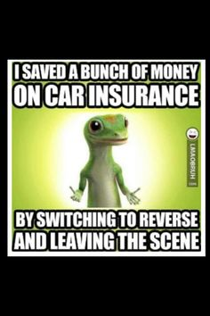 Save on Car Insurance lol