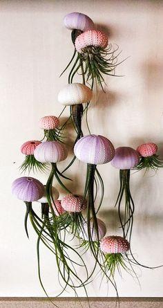 Suspension TROIS méduses Air plantes Long Butzii Airplants