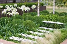 Designed to be contemporary and to create a calm, tranquil atmosphere, this stylish garden includes only a few plants but is a real masterpiece of simplicity.