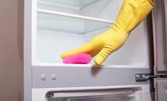 Pulire il frigorifero con prodotti naturali: 4 rimedi da provare | Case da incubo