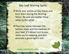 Bay leaf wishing spell