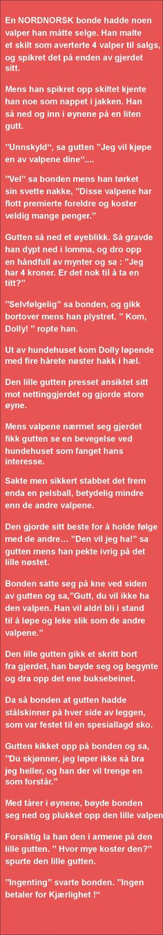 En NORDNORSK bonde hadde ... - SKUFF Verse, Funny Signs, Cool Words, Farmer, Texts, Positivity, Humor, Sayings, Gull