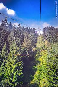 Busteni si Sinaia - 29 & 30 August 2015 - Romulus ANGHEL - Picasa Web Albums 30 August, Picasa Web Albums, Country Roads, Photos, Pictures