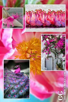 Lovely, Darling PINK! www.decorecomgigi.com