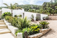 PURE HOUSE IBIZA is an amazing Boutique and Lifestyle Hotel in Ibiza island in Spain. Spanish Landscaping, Spanish Backyard, Home Landscaping, Spanish Style Homes, Spanish House, House Landscape, Landscape Design, Ibiza Island, Hotel Ibiza