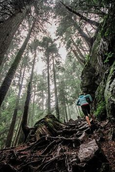 So excited for the weather to shape up so I can take advantage of North Conway's… #trailrunning