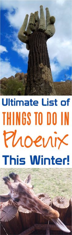 Things to do in Phoenix Arizona!  Top attractions, hiking, restaurants, photography and more!