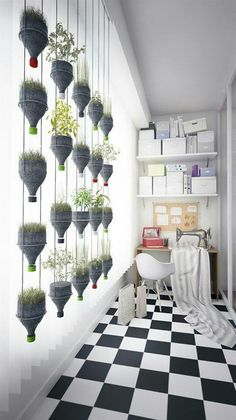 Great idea! You can use some bottles for planting.   #ecohostel #upcycle #recycle #plant @#bottle #decoration
