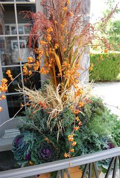 fall planting with broomcorn
