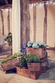 Crates and barrow idea - fresh plants (hydrangea and rosemary, delphinium and camomile)
