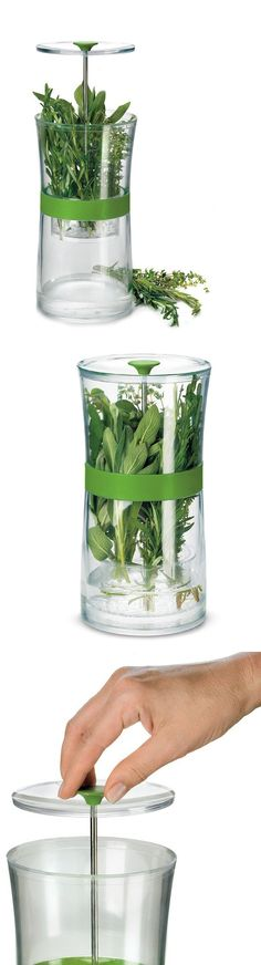 Herb Keeper   keeps herbs fresh and delicious for up to two weeks   Productdesign