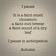 Autumn Cozy, Happy Fall Y'all, Hello Autumn, Autumn Inspiration, Fall Season, I Fall, Beautiful Words, Favorite Quotes, Favorite Things