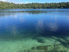 Resultado de imagem para lake eacham