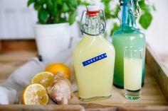 Ingefärsshot – Shot med ingefära! Healthy Breakfast Recipes, Raw Food Recipes, Healthy Eating, Healthy Recipes, Juice Smoothie, Smoothie Drinks, Smoothies, Herbal Remedies, Herbalism