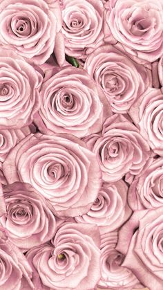 1c91398b117c6f6fc28eac5c94b9424c Jpg 736 1 309 Píxeles Pink Wallpaper Iphone 7 Pretty Backgrounds