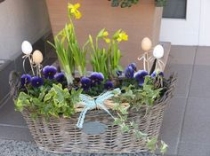 Spring, Pergola, Floral Design, Garden, Plants, Decor, Easter Activities, Garten, Decoration