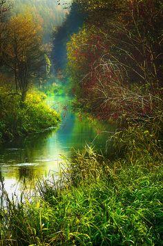 A Stream In Muhlhausen Photograph  - A Stream In Muhlhausen Fine Art Print
