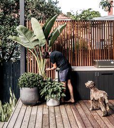 Backyard inspo - How good are long weekends Gardens love it just as Outdoor Bbq Kitchen, Outdoor Kitchen Design, Outdoor Pots, Outdoor Areas, Balkon Design, Alfresco Area, Outdoor Entertaining, Backyard Patio, Backyard Landscaping
