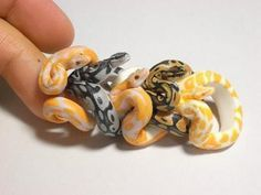 Ball python rings....I WANT THESE!!!