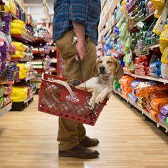 Maddie Shopping | Maddie on Things