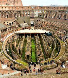 Hic sunt leones...Colosseum