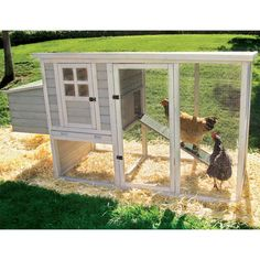 Precision Pet Products Hen House Chicken Coop - Chicken Coops at Chicken Coop Source