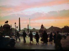 「夕景のコンコルド広場」Place de la Concorde|リヴォリ通り:Rue de Rivoli