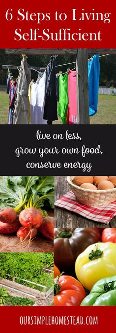 6 Steps to Living a Self-Sufficient Lifestyle - Are you looking to live on less, grow your own food, conserve energy and be more self-sufficient? Maybe you're looking for ways to simplify your life.