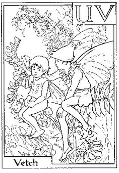 Coloring Page Activity Flower Fairy