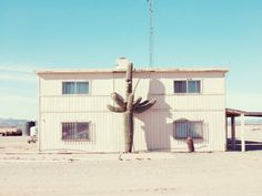 Landscapes photographies - Kourtney Roy Photography