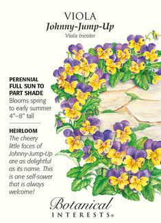 Johnny-Jump-Up Viola Seeds - 250 mg House Plants For Sale, Plants For Sale Online, Gardening For Beginners, Gardening Tips, Organic Gardening, Gardening Supplies, Planting Bulbs, Planting Flowers, Flower Gardening