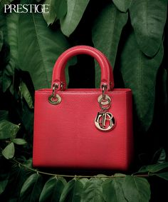 The Best Lady Dior Bags in Exotic Skin - Prestige Online - Indonesia Lady Dior, Christian Dior Bags, The Best, Exotic, Celebrity, Handbags, Search, Google, Style