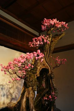Bonsai.... WOW!!!... This must be a very large and very old bonsai....