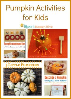 "A fun collection of hands-on pumpkin activities for kids. This is also a part of the ""A Little Bird Told Me"" Wednesday link party."