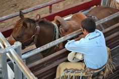 Justin Bell, of Stephenville, kneels down next to Minor Chick as he waits for his turn to compete in the saddle bronc riding event on Saturday. Bell's score of 74 points earned him the top spot at the Brown County Rodeo.