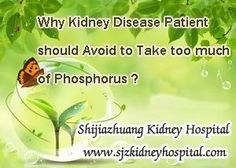 Why kidney disease patient should avoid to take too much of them ? Those two questions may be concerned by many kidney disease patient, because most of the kidney disease patient will be recommended not to take too much of it.