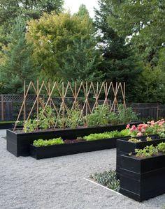 Hardscaping 101: Gravel Gardens
