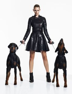 Best In Show Dog Fashion Shoot - Fashion - Stylist Magazine