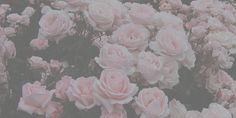 girly twitter headers - Google Search