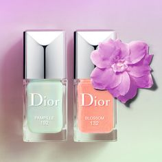 Dior In Bloom Kingdom of Colors Collection 2014