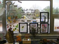 Window in the science center Science Inquiry, Inquiry Based Learning, Project Based Learning, Science Activities, Science Ideas, Reggio Classroom, Outdoor Classroom, Science Classroom, Kindergarten Inquiry