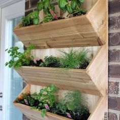 Cedar Wall Planter { Free DIY Plans - Planters - Ideas of Planters - DIY Wall Planter Free Plans Rogue Engineer garden planters from pallets Planters Planters diy planters diy plans Planters pots Planters raised Planters vegetable Diy Wooden Planters, Diy Wall Planter, Cedar Planters, Herb Planters, Planter Ideas, Outdoor Wall Planters, Concrete Planters, Wooden Garden Planters, Herb Planter Box