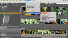 This tutorial will show you how to use Photoshop Actions to resize and edit multiple photos at once with a batch edit.