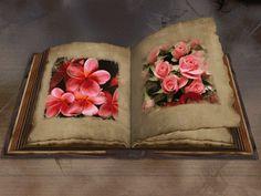 libro de flores gif