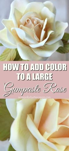 Petal dusts add color to your gumpaste roses and it's a great way to make them pop. Using two different colors is a great method for getting a realist look.