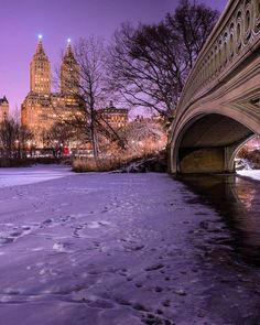 Bow Bridge Central Park by Matthew Chimera Photography by newyorkcityfeelings.com - The Best Photos and Videos of New York City including the Statue of Liberty Brooklyn Bridge Central Park Empire State Building Chrysler Building and other popular New York places and attractions.