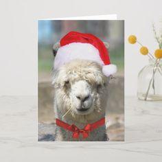 Santas Helper Sweet Alpaca in Red Christmas Hat Holiday Card Llama Christmas, Red Christmas, Xmas, Holiday Cards, Christmas Cards, Christmas Decorations, American Animals, Cute Llama, Pillow Room