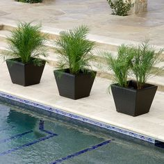 Portofino Woven Planters in Espresso Outdoor Patio and Garden Backyard Bar, Rooftop Patio, Patio Bar, Pool Furniture, Outdoor Furniture Sets, Outdoor Decor, Patio Planters, Furniture Collection, The Ordinary